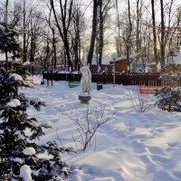 Зимний городской парк в Люберцах. Подмосковье :: Ольга Кривых
