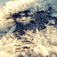 Снежинки 2 :: Катерина Шурыгина