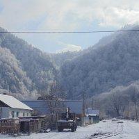 зима. :: ольга зубкова