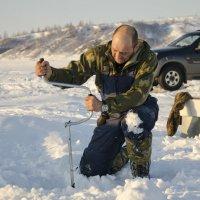 Рыбак :: Сергей Лошкарёв