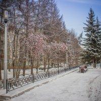 Городской пейзаж. :: Александр Ломов