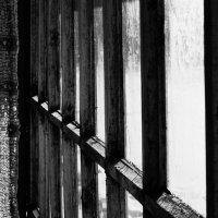 бабушкино окно :: Дарья Сашина