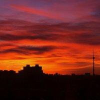 Закат 2 (серия вид из окна) :: Елена Герасимова