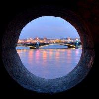 вид на Троицкий мост :: Аркадий Алямовский