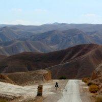 Иудейские  горы :: Natalia