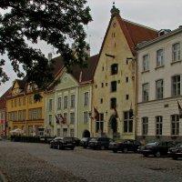 Таллин :: максим лыков