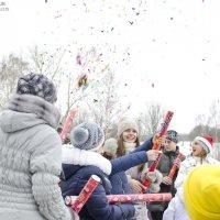 в предверьях нового года :: Алексей -
