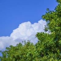 Sky :: Mail Mamedov