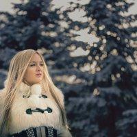 Ранняя зима :: Валерий Руф