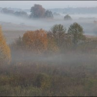 Золотая осень :: Михаил Розенберг