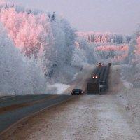 Сибирь :: Елена Гавшина