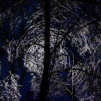 Ледяной рисунок :: Ирина Ворсина