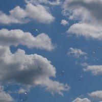 Воздушные шары :: Владимир Гилясев