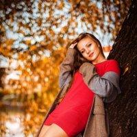 Золотая осень :: Stanislav Dunin