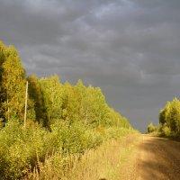 В лучах заката :: Сергей Лысков