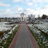 Однажды в парке :: Юлия Бондаренко