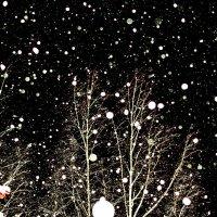 Снегопад :: Алексей -