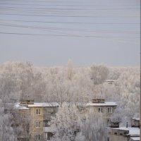 Вид из окна) :: Маргарита Чайка