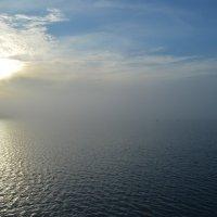Туман :: Ksenia Crocker
