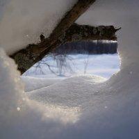 Тайное окно в мир будущего :: Евгешка Храмова