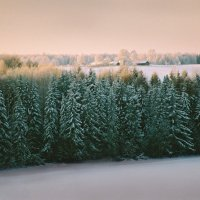 За полями и лесами :: Валерий Талашов