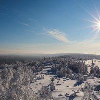 зимний пейзаж :: Андрей Ziikes