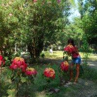 """""""во дворе в цветах"""" :: Ксения Поляева"""