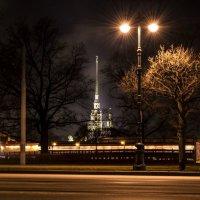 Ночь, улица, фонарь, Санкт-Петербург! :: Евгений Джон