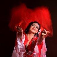 Цыганская страсть :: Игорь SilkWay