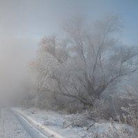 Наползающий туман :: Олег Самотохин