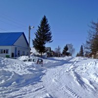 Мороз и солнце :: Владимир Арефьев