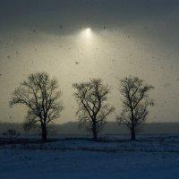 Пейзаж без названия :: Андрей Хитайленко