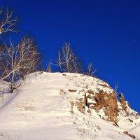 Смотрят березки в небесную синь... :: Евгений Юрков