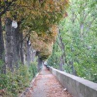 Осень в Париже :: Людмила