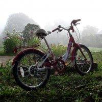 Портрет её велосипеда :: Владимир Гилясев