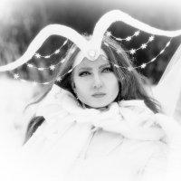 пленэр ..снежная королева... :: андрей мазиков