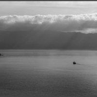 Один в море :: Игорь Кузьмин