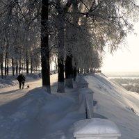 Мороз и солнце... :: Сергей Жуков