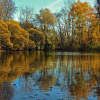 Золотая осень :: Viacheslav Birukov
