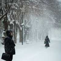 Снежная радость :: Valentina Zaytseva