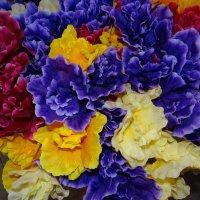 Цветы. :: Антонина Гугаева