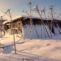 Деревня Мураново :: Евгений Жиляев