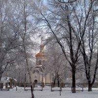 Зимняя погодка. :: Мэрин Дюбо