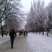Зимняя аллея :: Сергей Фадеев