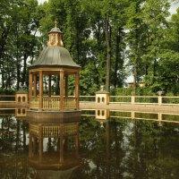Летний сад. Менажерийный пруд(птичник) для водоплавающих птиц. :: Ирина Трофимова
