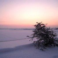 Зимний закат :: AstaA