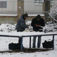Завтрак на троих. :: Сергей Фадеев