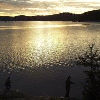 Вечерняя рыбалка на Ладоге :: Надежда Баликова