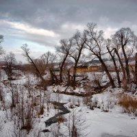Деревья - люди :: Владимир Макаров