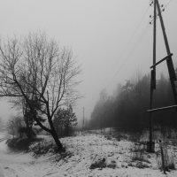 10 февраля :: Юрий Бондер